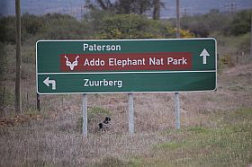 Addo-Nationalpark
